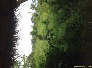 ที่ดิน 5000 ปทุมธานี คลองหลวง คลองหก