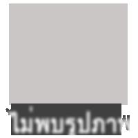 ทาวน์เฮาส์ 3500 ปัตตานี เมืองปัตตานี รูสะมิแล