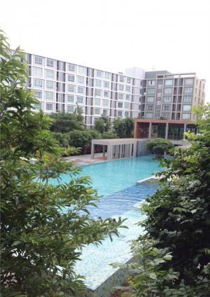 คอนโด 11000 เชียงใหม่ เมืองเชียงใหม่ ฟ้าฮ่าม