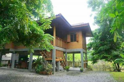 บ้านเดี่ยว 18000 เชียงใหม่ เมืองเชียงใหม่ ป่าตัน
