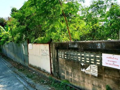 ที่ดิน 18900000 กรุงเทพมหานคร เขตพระโขนง บางจาก