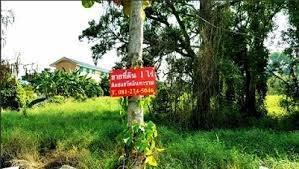ที่ดิน 12800000 นนทบุรี ปากเกร็ด บางตะไนย์