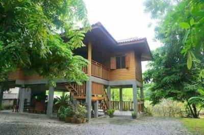 บ้านเดี่ยว 14000 เชียงใหม่ เมืองเชียงใหม่ ป่าตัน