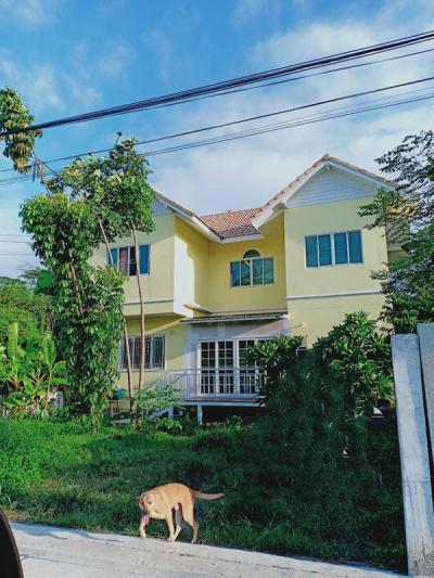 บ้านเดี่ยว 5500000 กรุงเทพมหานคร เขตบางเขน ท่าแร้ง