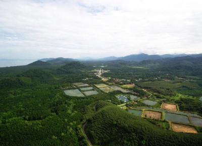 ที่ดิน 13000000 ระนอง กิ่งอำเภอสุขสำราญ กำพวน