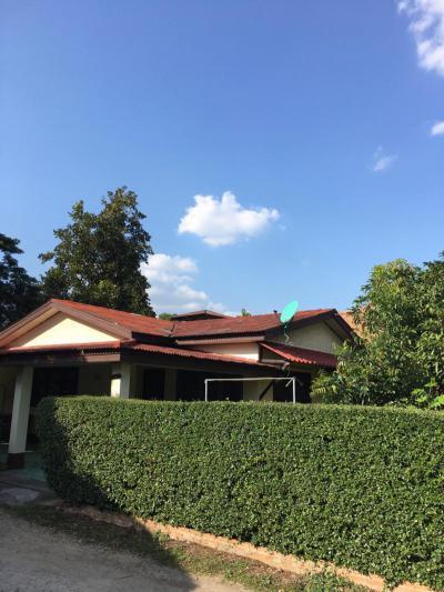 บ้านเดี่ยว 10000 เชียงใหม่ หางดง หนองควาย