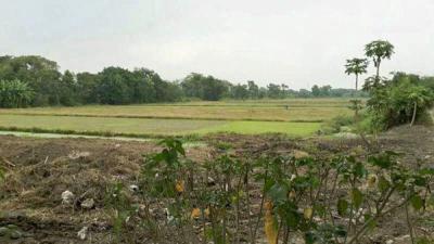 ที่ดิน 12000000 กรุงเทพมหานคร เขตมีนบุรี แสนแสบ