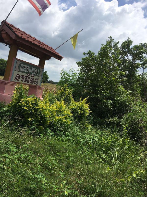ที่ดิน 350000 ลพบุรี หนองม่วง ยางโทน