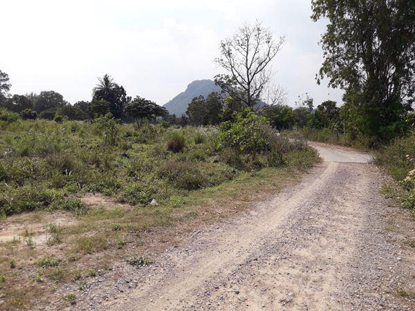 ที่ดิน 35000000 เพชรบุรี ชะอำ สามพระยา
