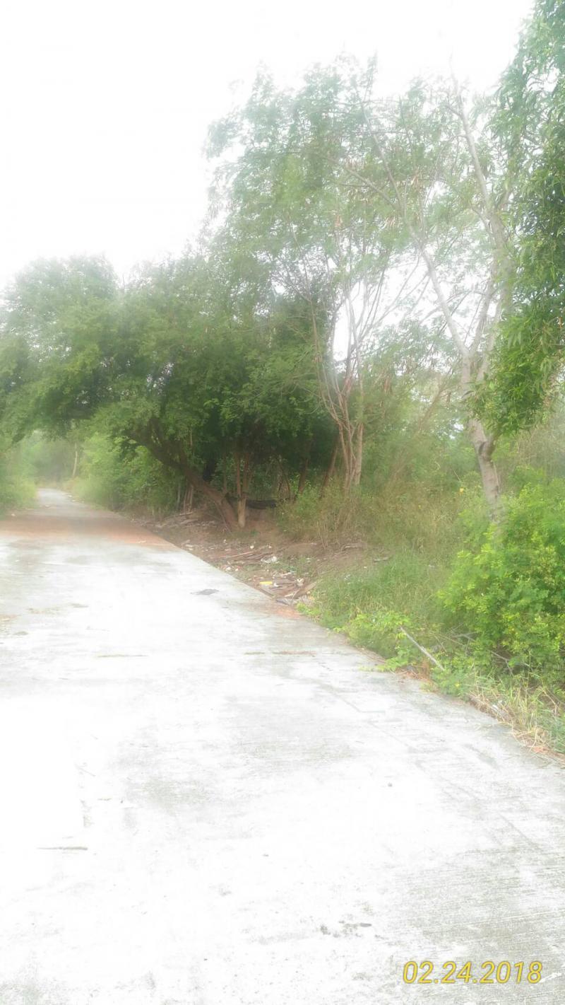 ที่ดิน 2900000 กรุงเทพมหานคร เขตประเวศ หนองบอน