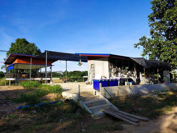 ที่ดิน 25000000 อำนาจเจริญ ชานุมาน ชานุมาน