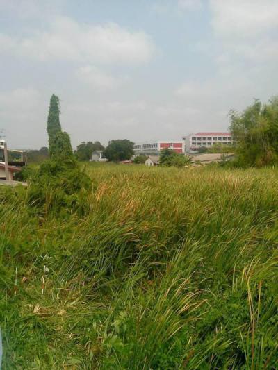 ที่ดิน 35000 กรุงเทพมหานคร เขตดอนเมือง สีกัน