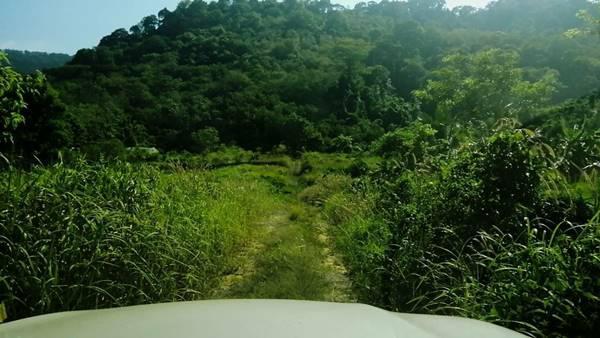 ที่ดิน 600000 ภูเก็ต ถลาง ป่าคลอก