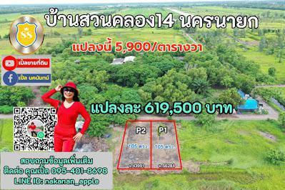 ที่ดิน 619500 นครนายก องครักษ์ องครักษ์