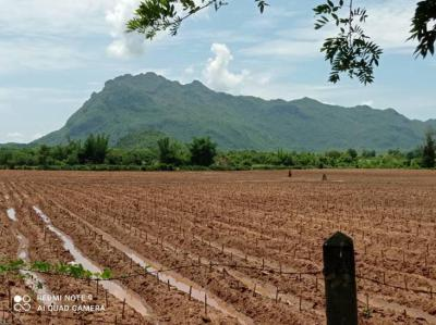 ที่ดิน 450000 กาญจนบุรี ไทรโยค ไทรโยค
